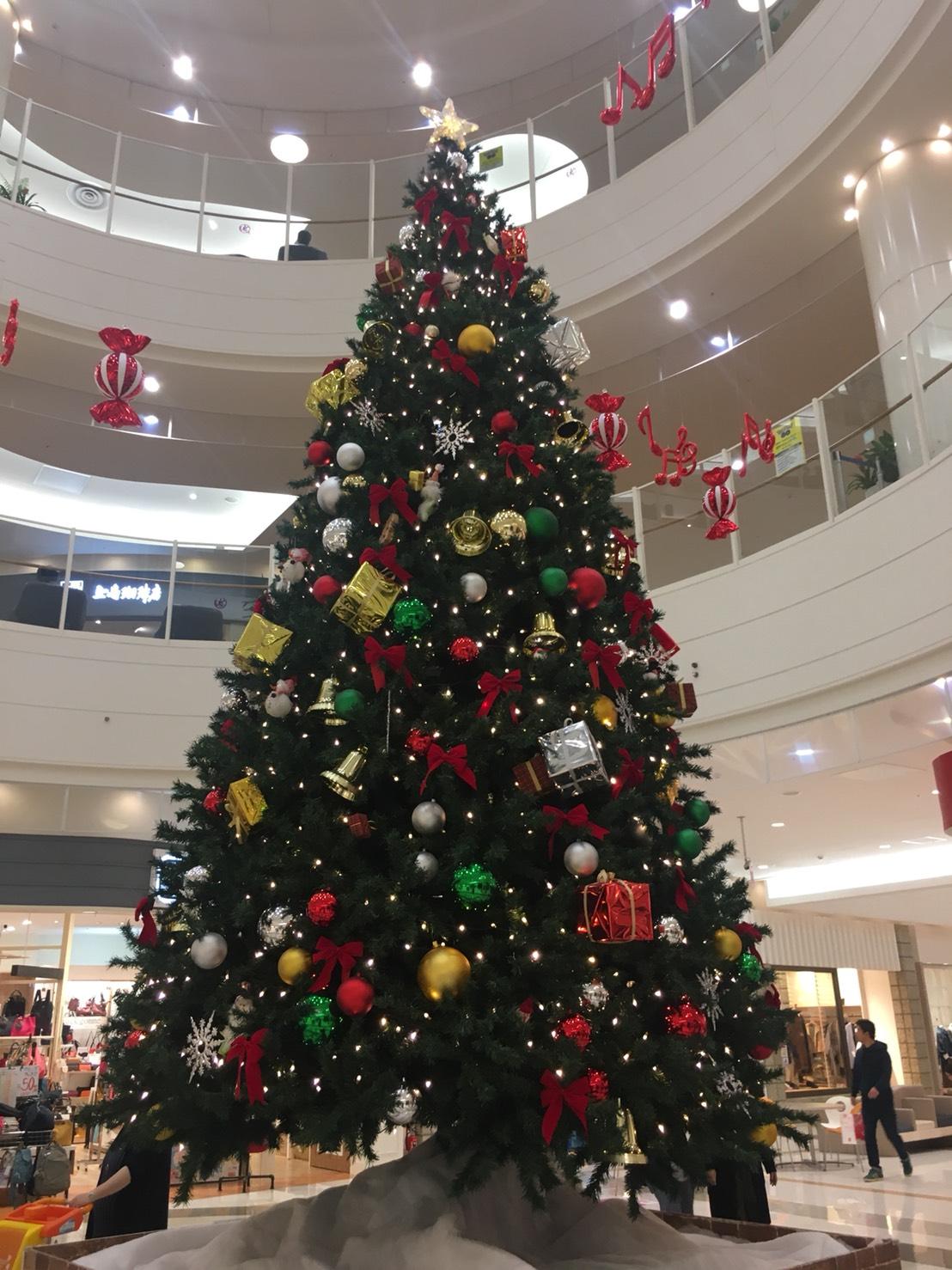 ショッピングモールのツリーの写真