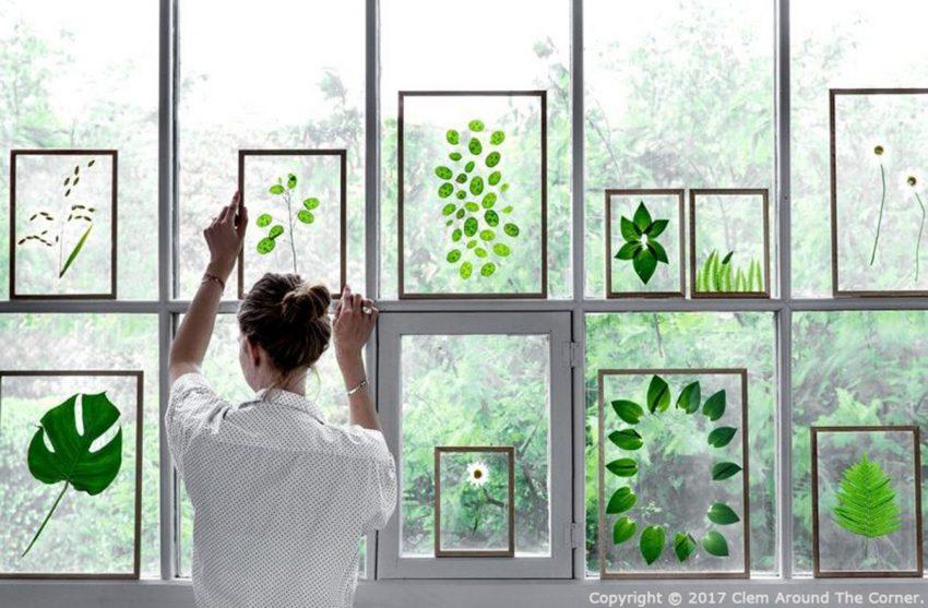 植物のある暮らしのイメージ画像